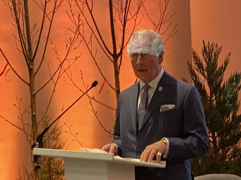 Rede des Prince of Wales