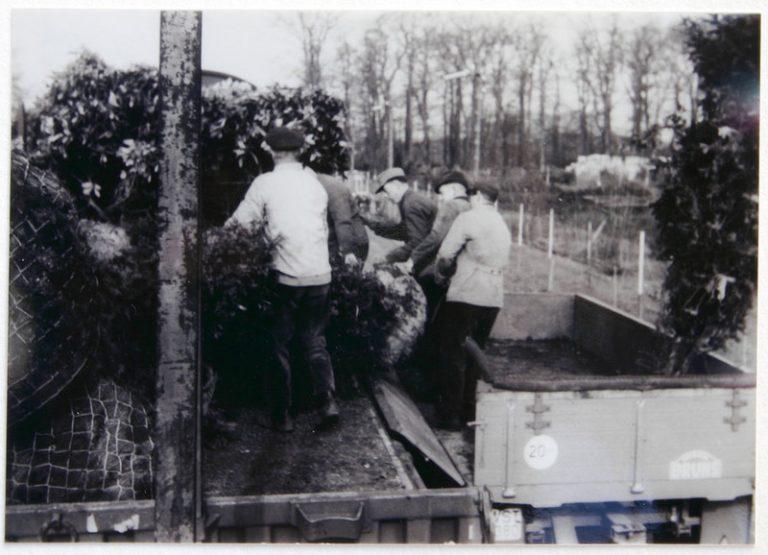 Anschlussgleis der Hausbaumschule 1958