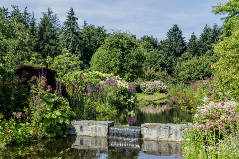Rhododendronpark Gristede Wasserfall