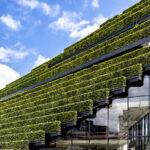 (EN) Europas größte Grünfassade